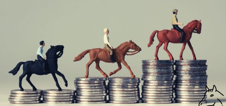 Combien coûte réellement un cheval