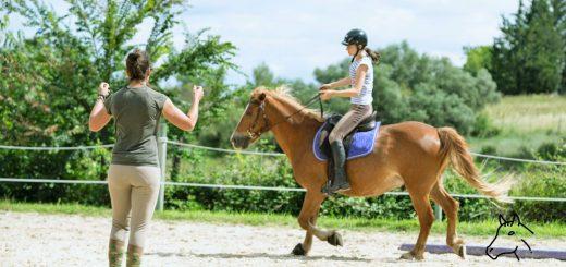 Comment débuter l'équitation et monter à cheval