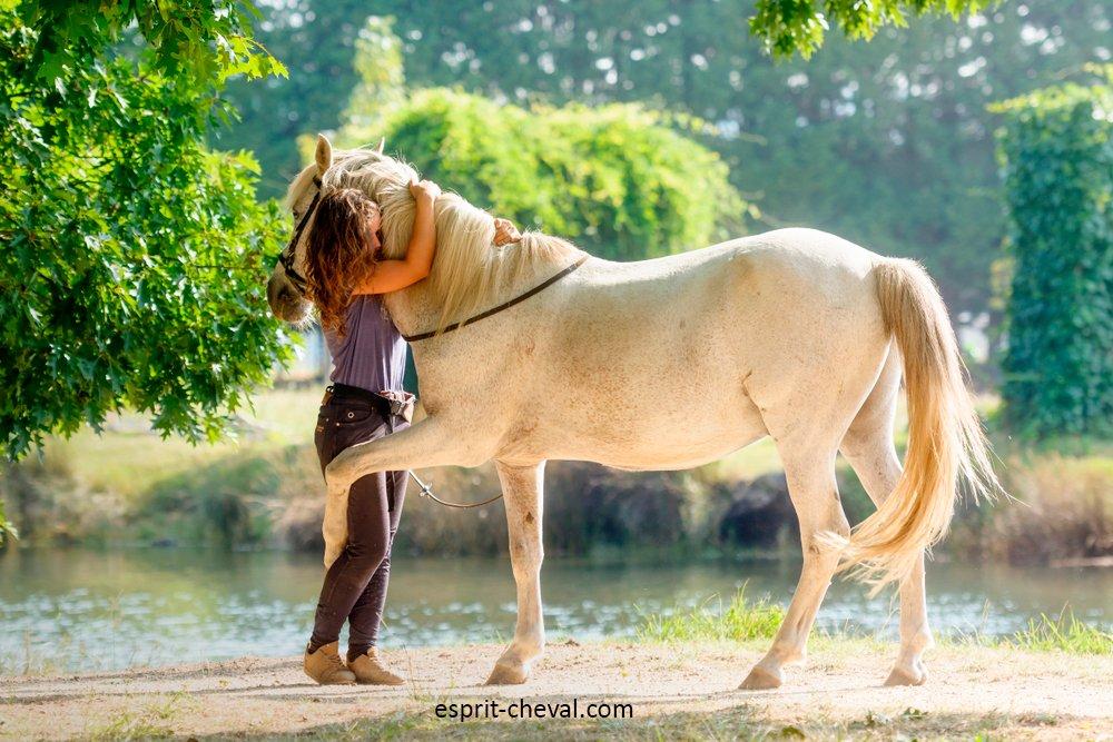 Comment occuper mon cheval au pré ?