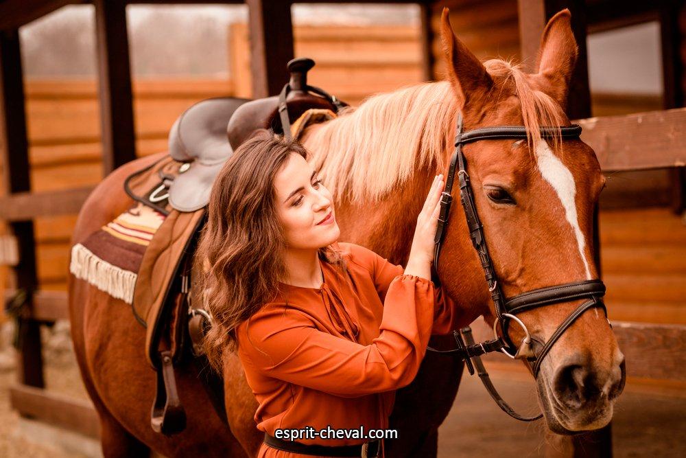 L'harmonie parfaite avec votre cheval