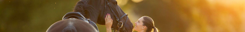 Le monde du cheval - Esprit cheval