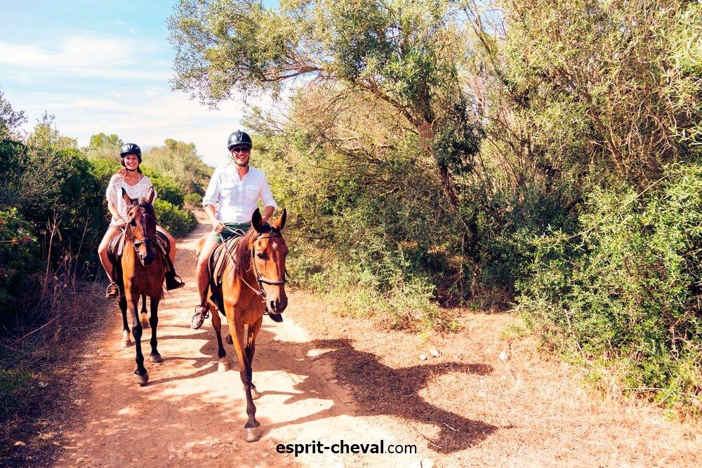 l'équitation d'extérieur